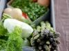 asparagusfenneltortilla-prep_0007-cr