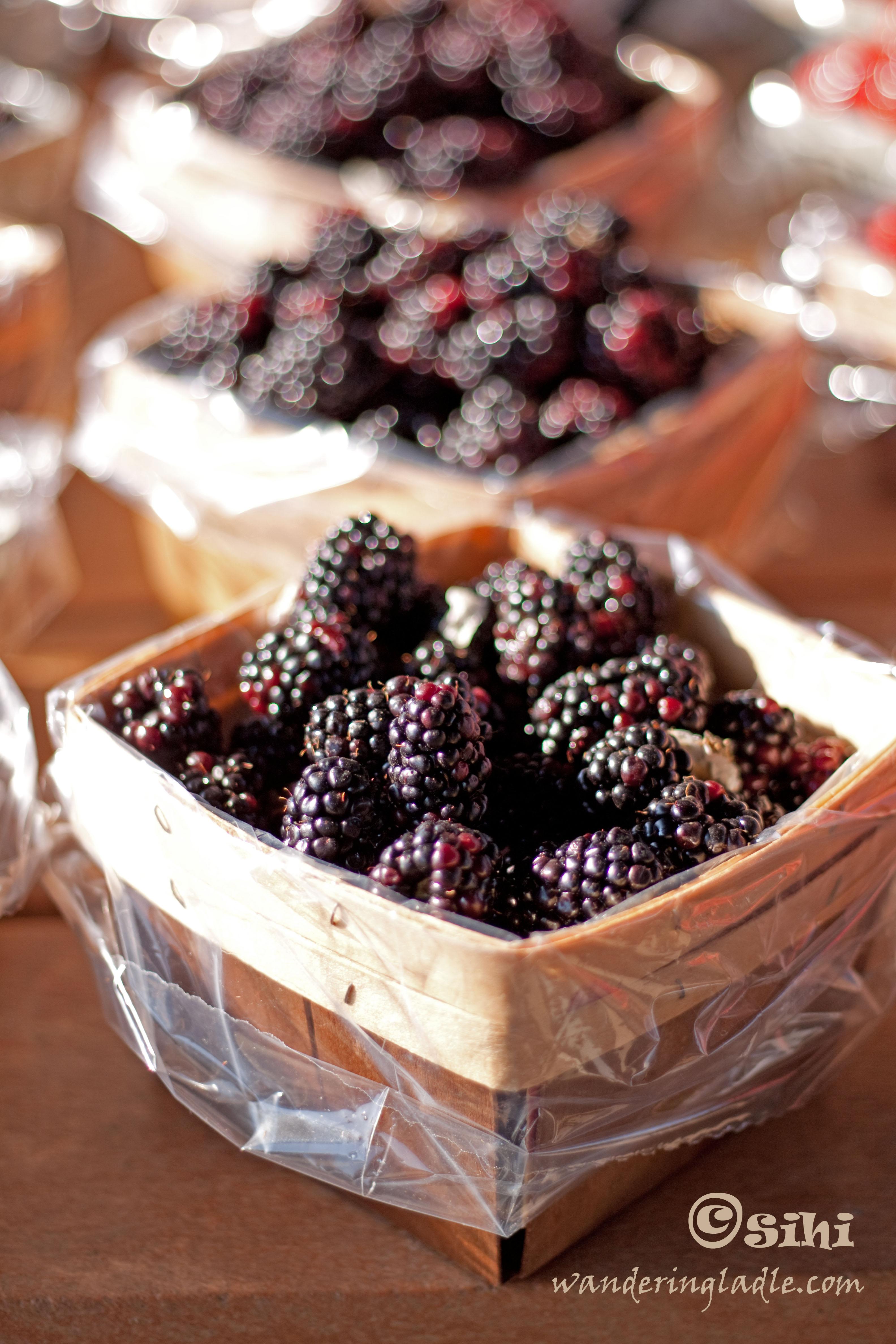 blackberries_sihi_wl-copy