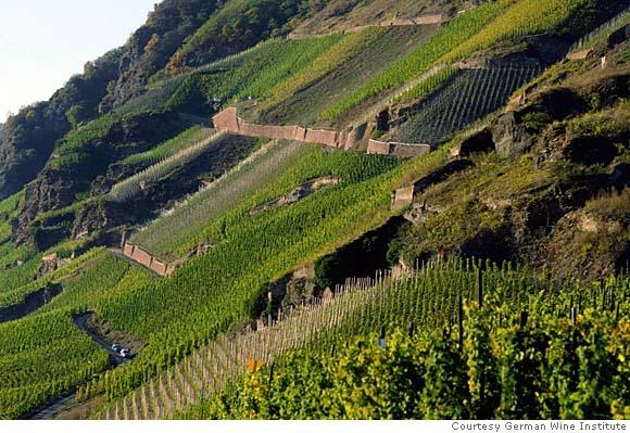 Steep Mosel vineyards in Germany, photo by http://lastingimpressionswineblog.wordpress.com/2011/02/23/german-wine-wineblog-20/