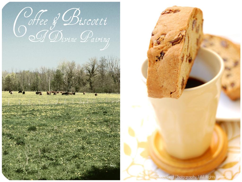 Biscotti Picnik collage 3 bis