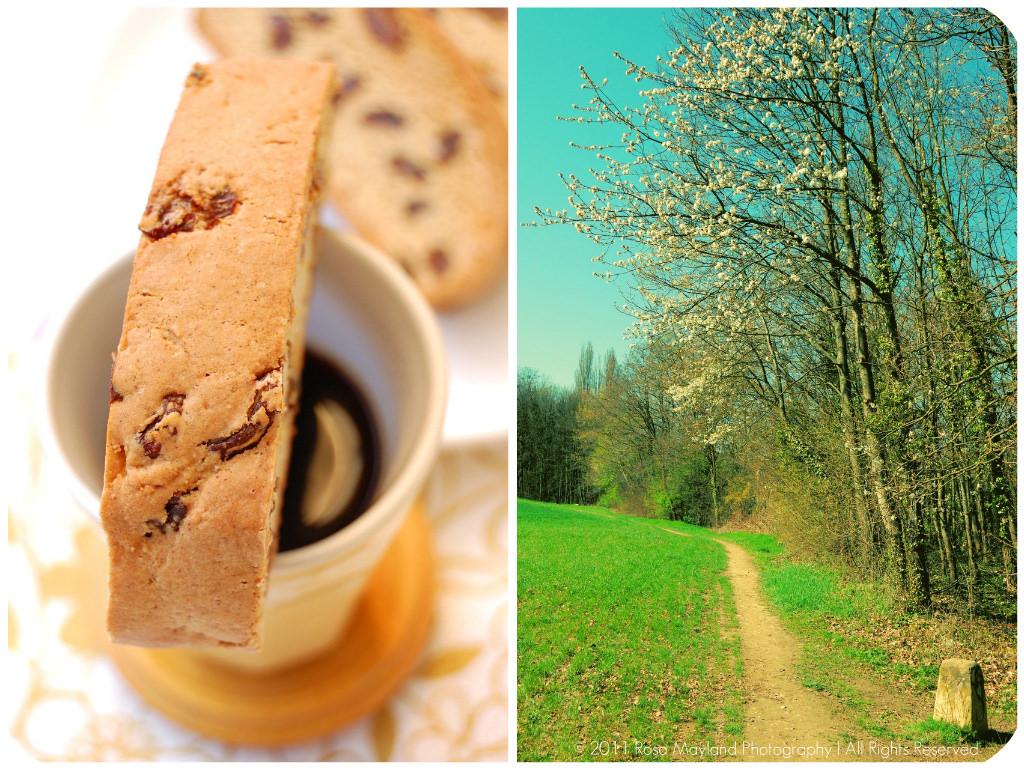 Biscotti Picnik collage 6 bis