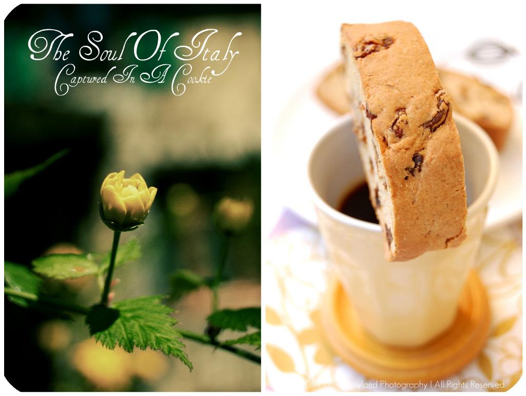 Biscotti Picnik collage 1 bis