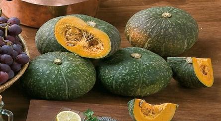 zucca gialla pumpkin